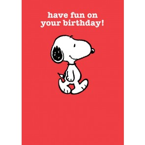 Have Fun On Your Birthday!