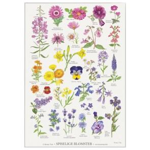 Spiselige Blomster - plakat