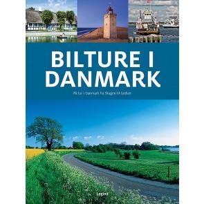 Bilture i Danmark