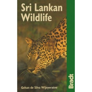 Sri Lankan Wildlife