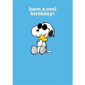 Have A Cool Birthday!
